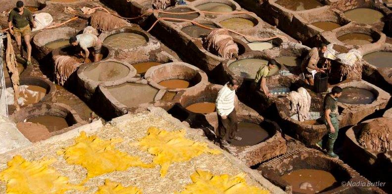 _DSC8420Morocco Dyers