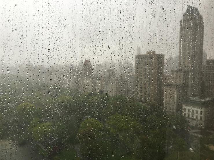 NYC Tears